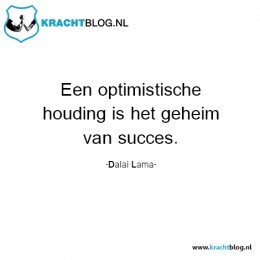 een-optimistische-houding-is-het-geheim-van-succes