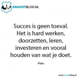 succes-is-geen-toeval,-het-is-hard-werken,-doorzetten,-leren,-investeren-en-vooral-houden-van-wat-je-doet