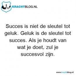 succes-is-niet-de-sleutel-tot-geluk,-geluk-is-de-sleutel-tot-succes