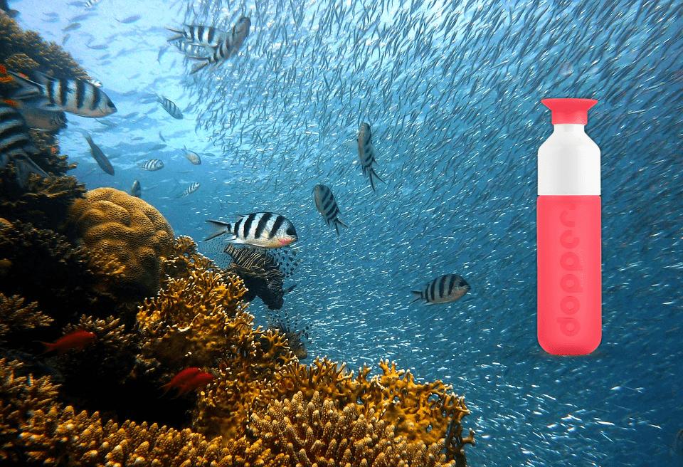 Dopper Coral Red